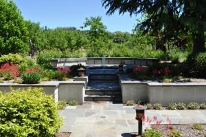 Landscape Contractor in Sonoma County