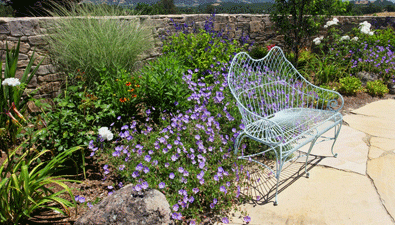 Sonoma County Landscape Design Services