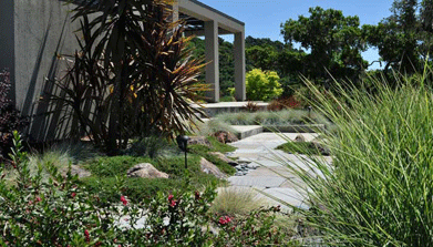 Landscaping Services in Healdsburg